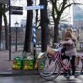 Hofvijver-Den-Haag---Esther-van-der-Wallen