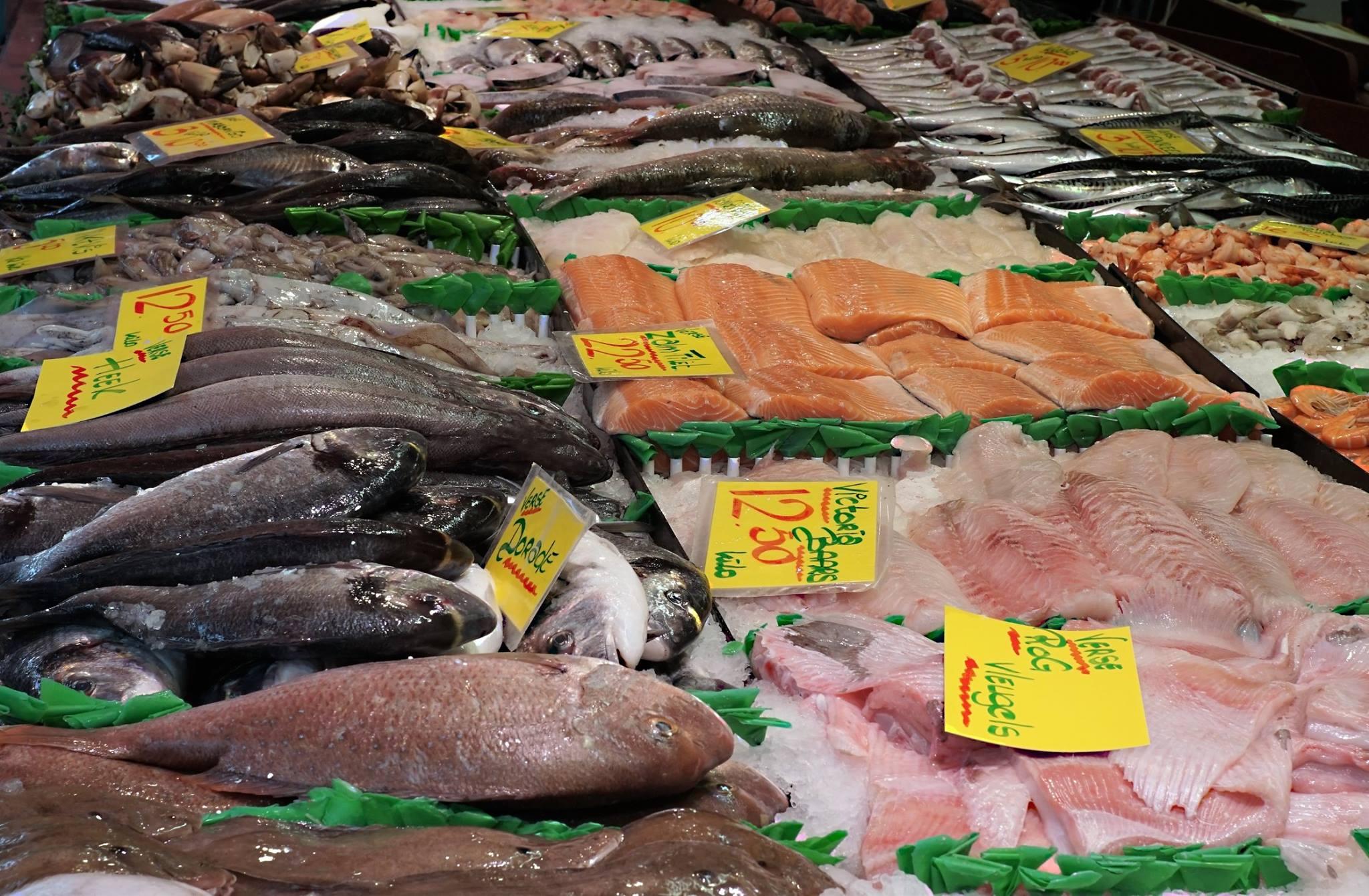 Vishandel Brouwer 12
