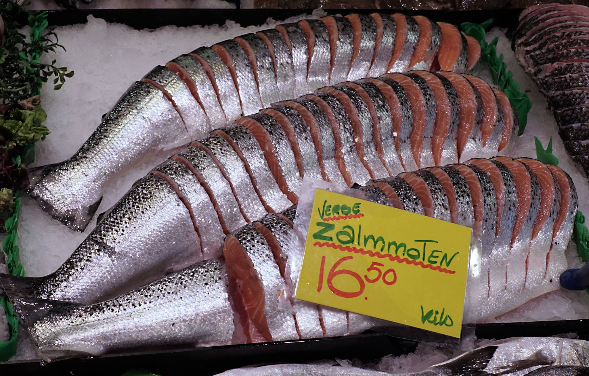 Vishandel Brouwer 4