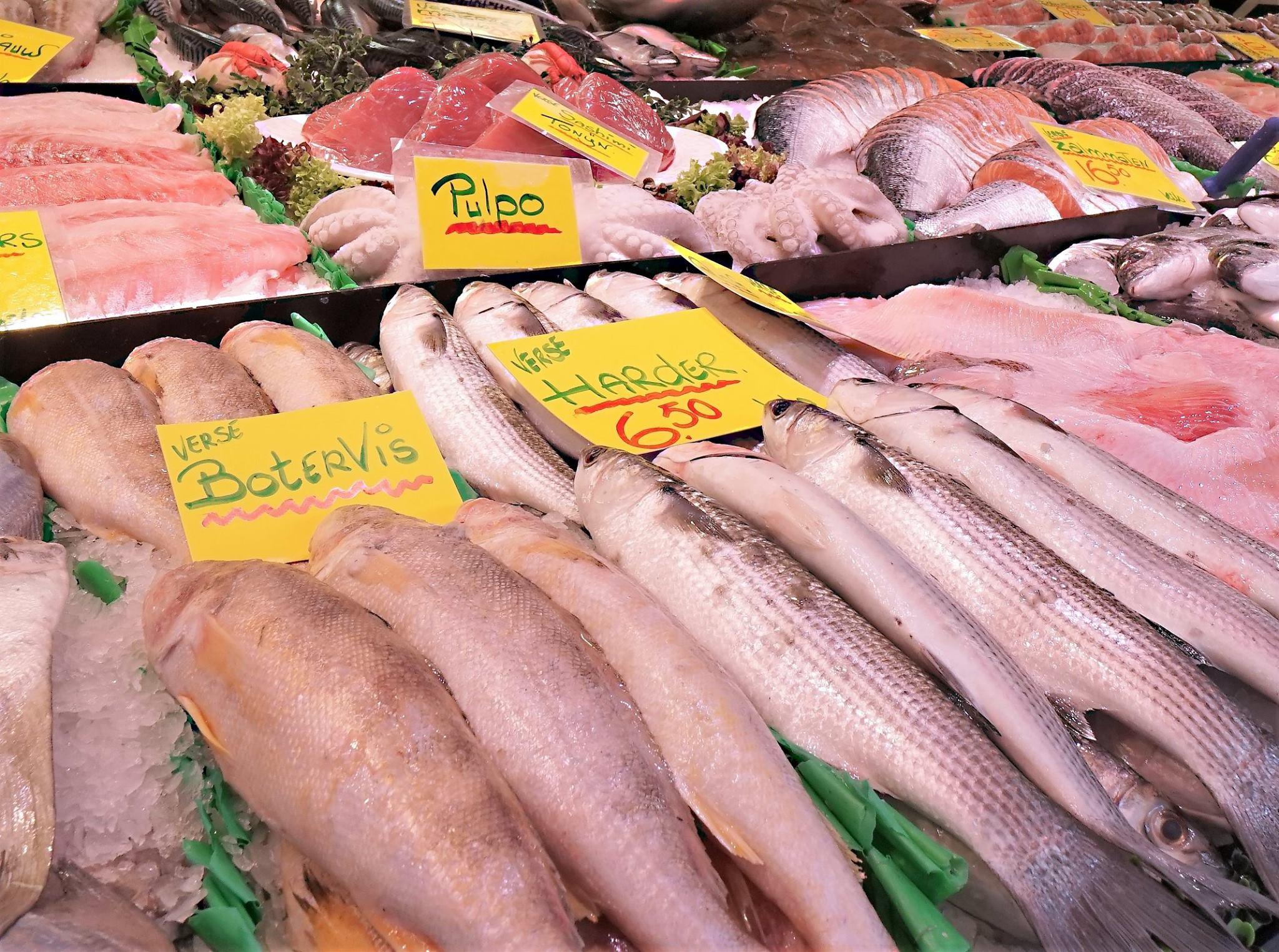 Vishandel Brouwer 8